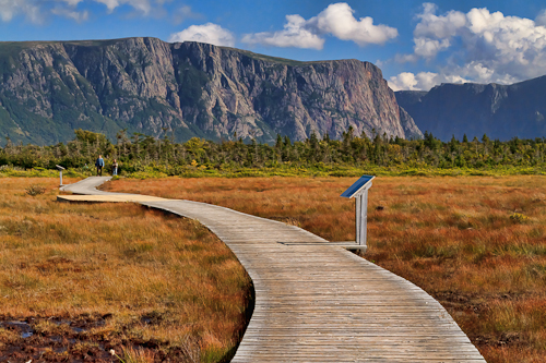 Western Brook Pond Marsh, Gros Morne National Park