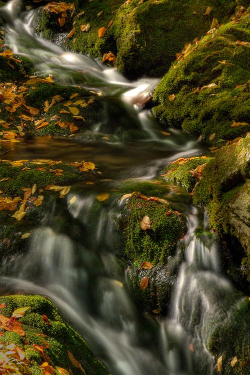 Dickson Falls, Fundy National Park, New Brunswick